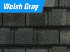 Welsh Gray